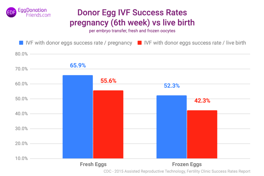 IVF with egg donor – success rate of transfers with fresh and frozen eggs