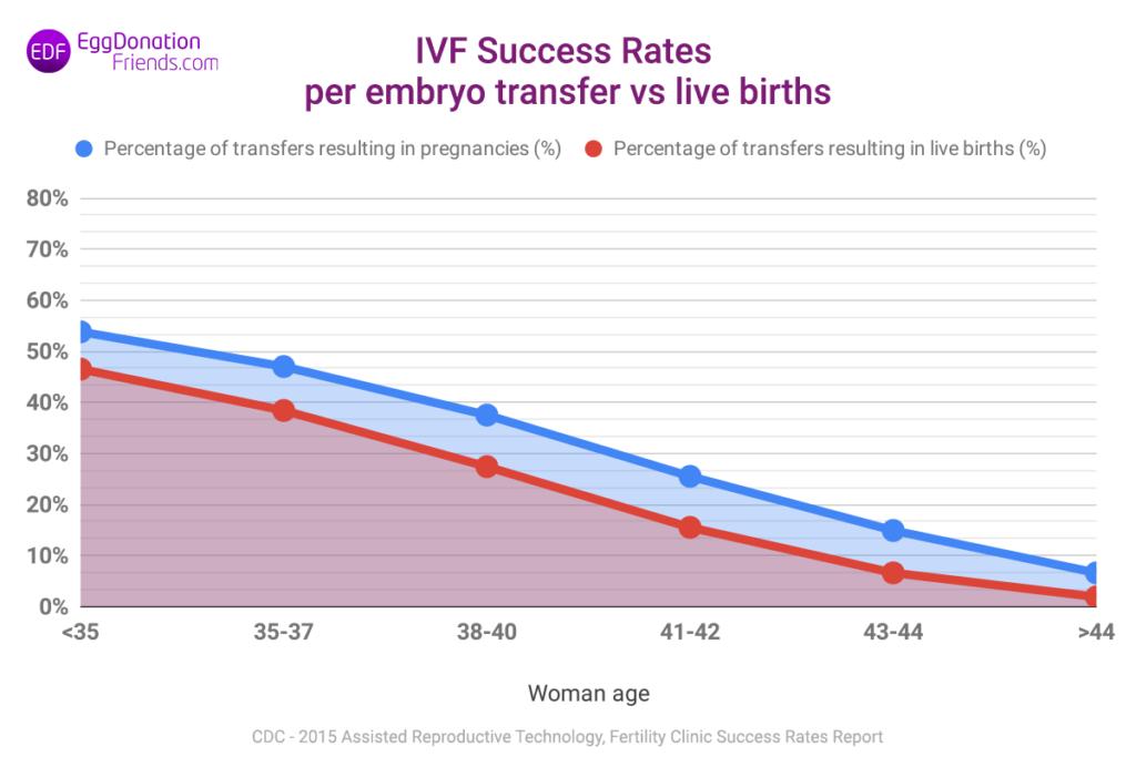 IVF success rates - pregnancies per embryo transfer vs live births