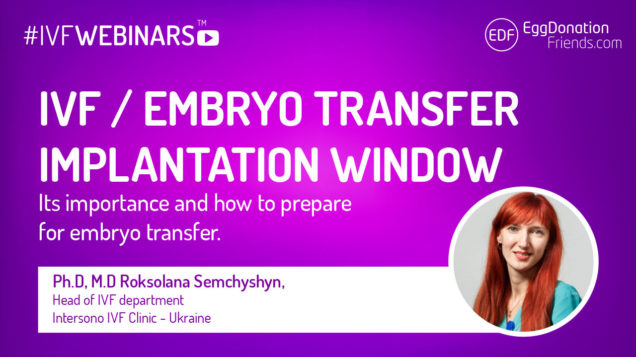 IVF, Implantation window and embryo transfer