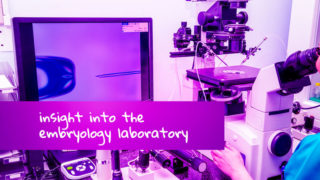 IVF embryo development - insight into the Embryology Lab