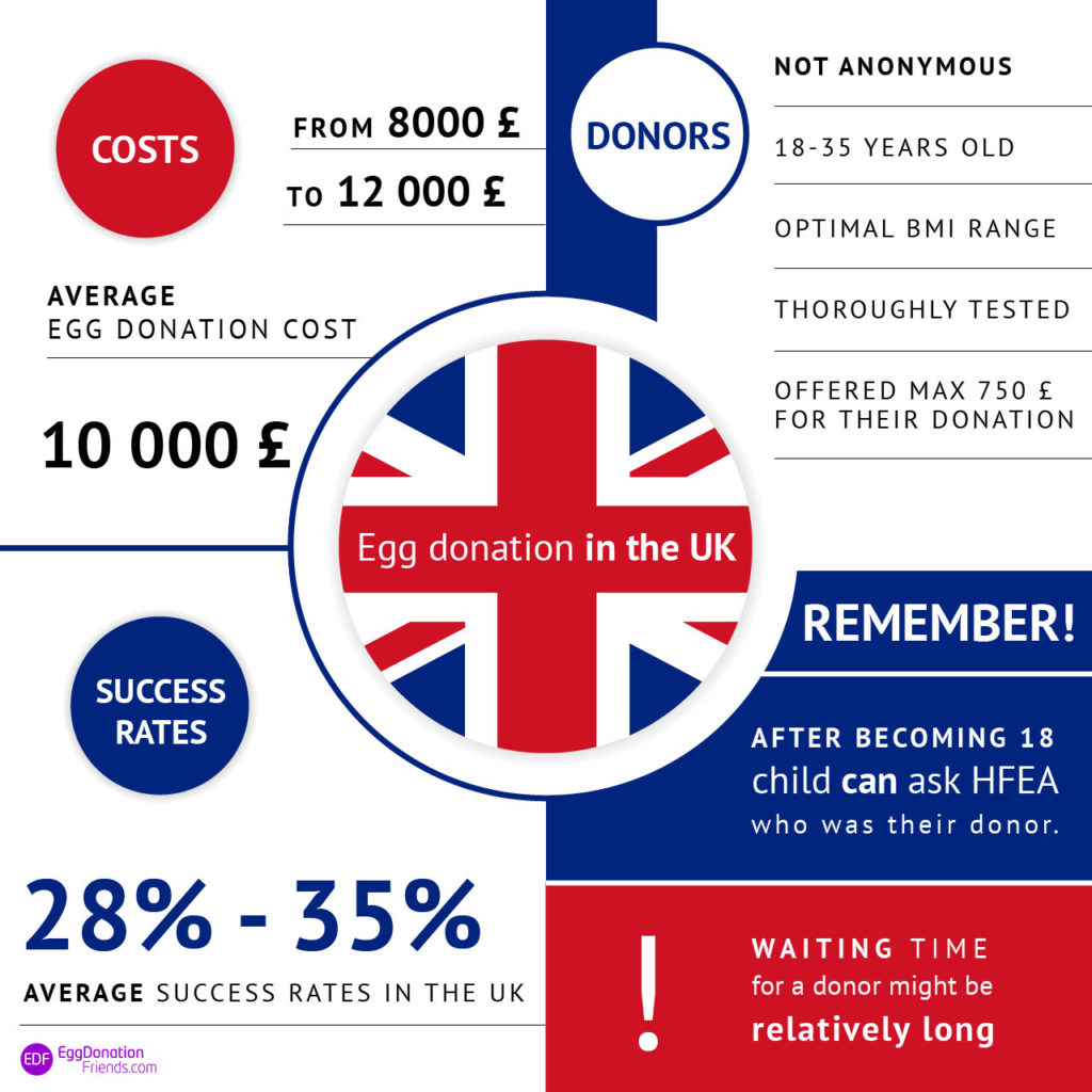 Egg donation UK – prices, success rates and donors