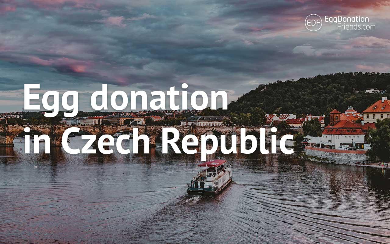 Egg donation in Czech Republic