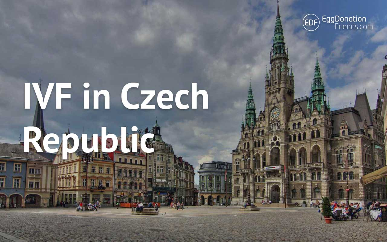 IVF egg donation Czech Republic