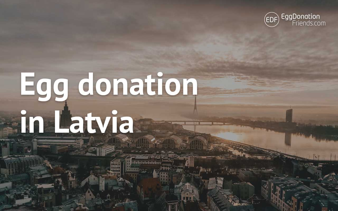 Egg donation in Latvia