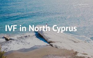 IVF egg donation in North Cyprus
