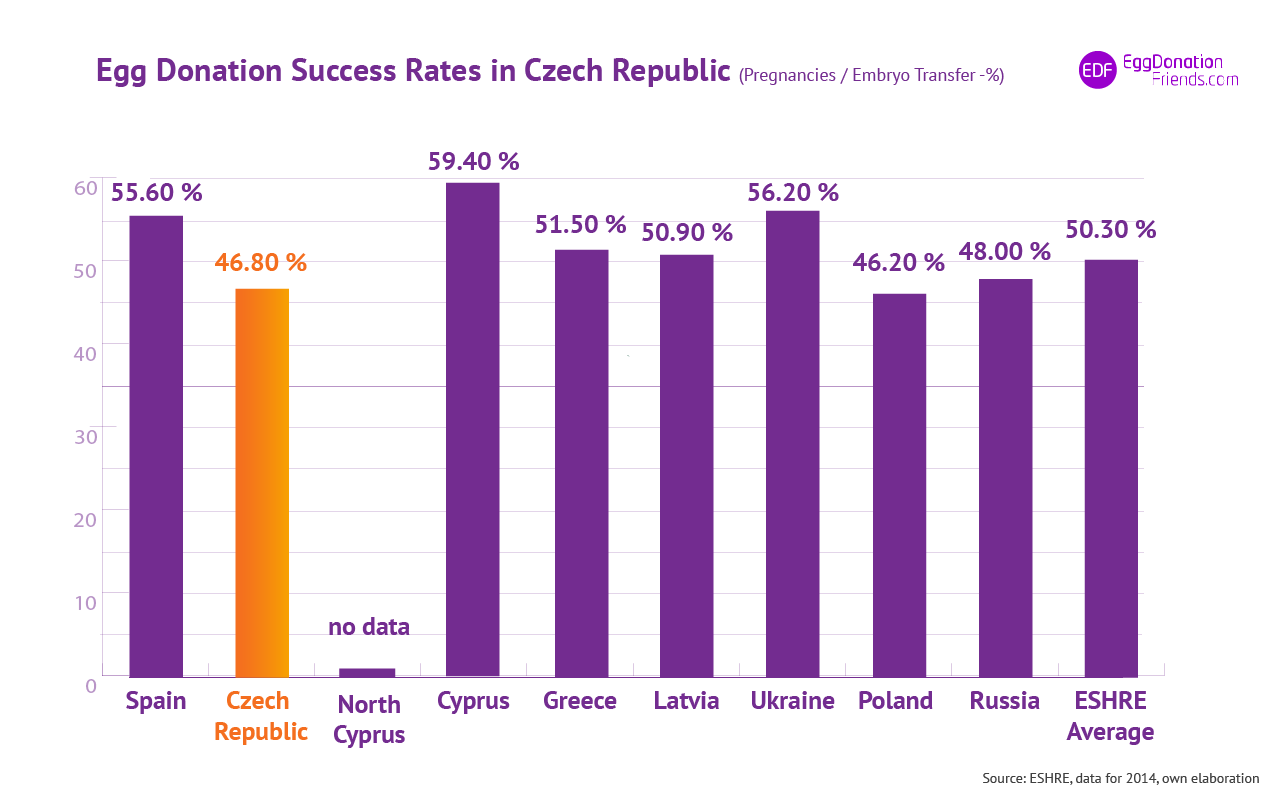 IVF egg donation success rates- Czech Republic