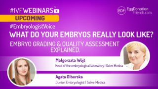 What do your embryos really look like? Embryo grading and quality assessment explained #IVFWEBINARS