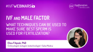 IVF and male factor. What techniques can be used to make sure best sperm is used for fertilisation. #IVFWEBINARS