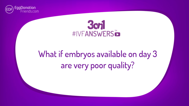 What if quality of embryos available on day 3 is poor? | #IVFANSWERS